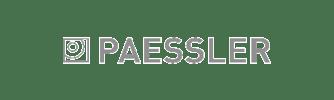Paessler Partner Logo